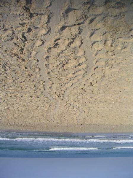 ים הפוך