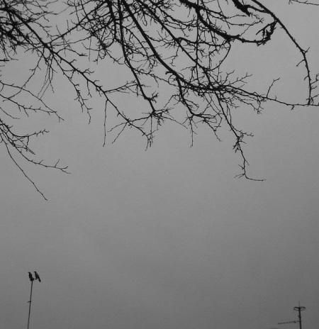 myphoto (1)