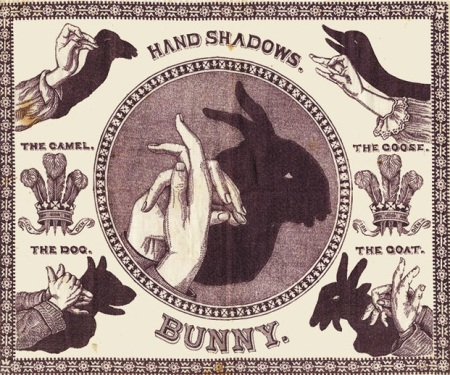צל ארנב
